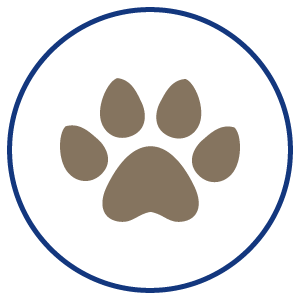 paw icon, mobile veterinary clinic, vet clinic, house calls, vet house calls, pet house calls, Stover Veterinary Services, Tiffin, Ohio